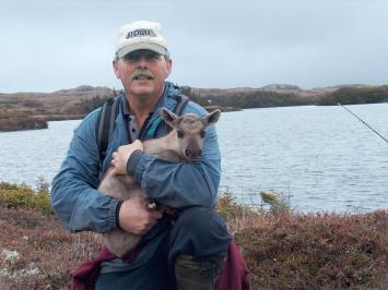 Baby Caribou: Lost and Found article picture